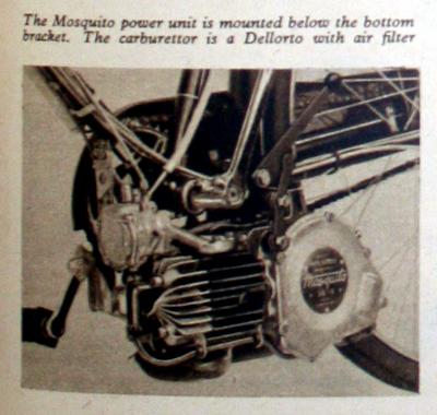 1955mosquito-copy3.jpg
