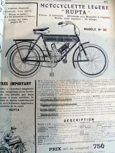 1910cat2.jpg